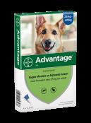 Afbeelding van Advantage Hond 400