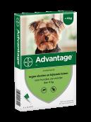 Afbeelding van Advantage 40 Hond tot 4 kg Pipetten...