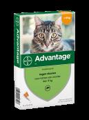 Afbeelding van Advantage 40 Kat tot 4 kg Pipetten...