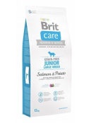 Afbeelding van Brit Care Junior Large Salmon Potato Grain Free 12 kg...