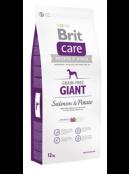 Afbeelding van Brit Care Giant Salmon Potato Grain Free 12 kg...