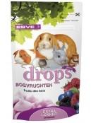 Afbeelding van Esve Drops Bosvruchten 75 Gr...